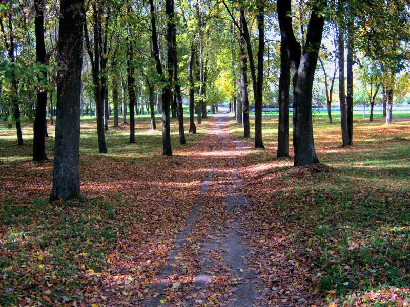 Осенняя дорожка в парке(льнокамбинат)